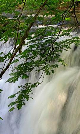 waterfall-2-270x450